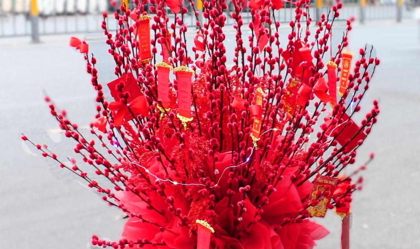 Ý nghĩa của nụ tầm xuân ngày Tết – loài hoa may mắn và thịnh vượng