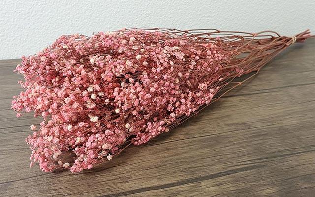 Hoa baby khô để được bao lâu? Cách bảo quản hoa baby khô